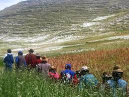 La Quinoa en la sierra peruana